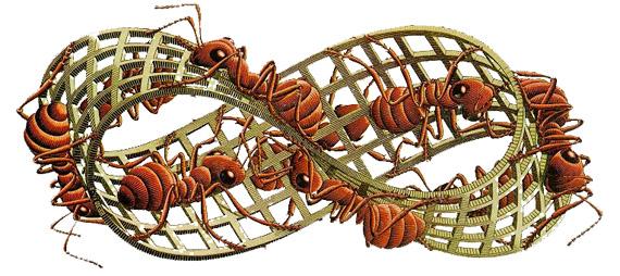 el anillo de Moebius, xilograf a de Maurits Cornelis Escher
